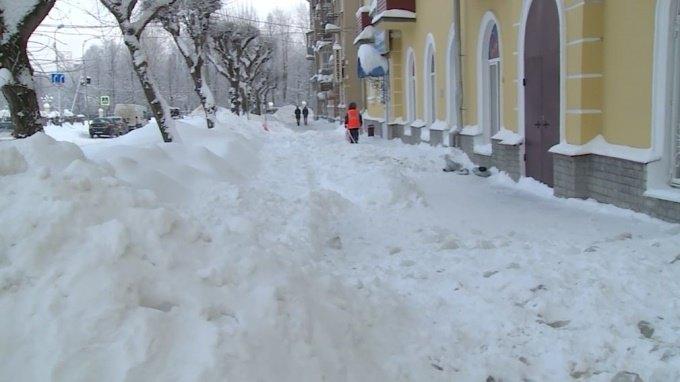 Триммер насадка для уборки снега